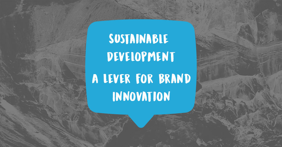Sustainable development Brand innovation Competitive advantage Market opportunities